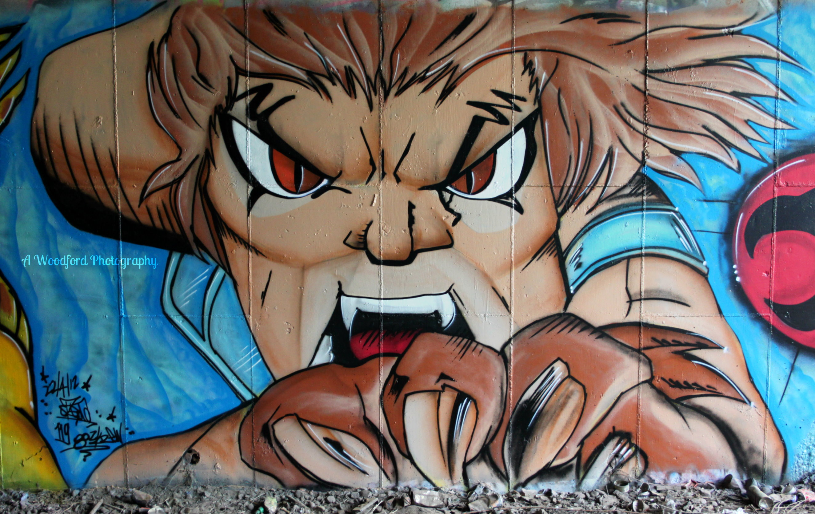Everyone must know Lion-O from Thundercats?!