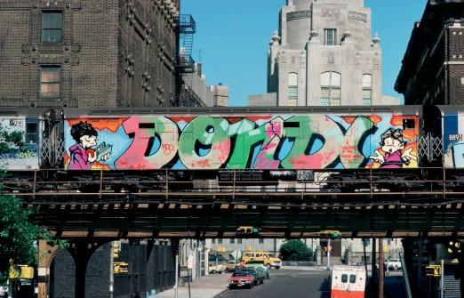 dondi-train